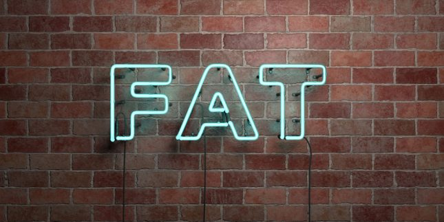 Fat isnt a dirty word
